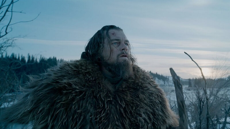 The Revenant, critique