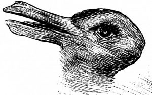 canard, lapin, illusion, optique